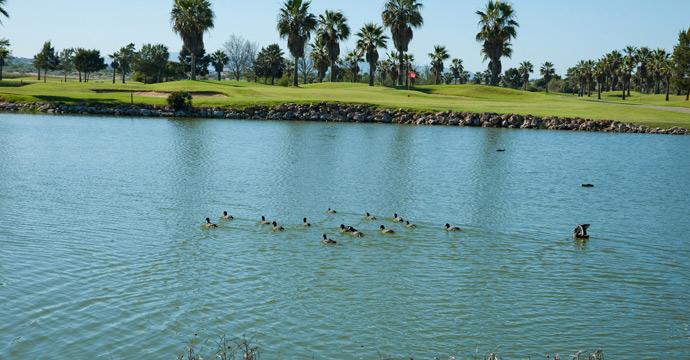 Salgados Golf Course - Image 9