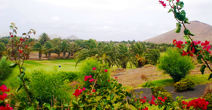 Spain Golf Golf Costa Teguise Golf Course Teetimes