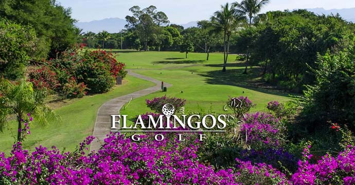 Los Flamingos Golf Course - Photo 1